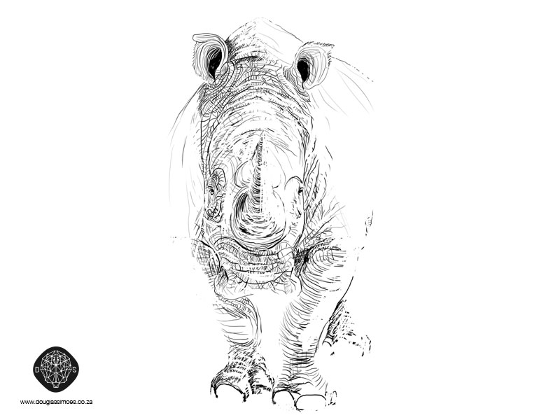rhino1